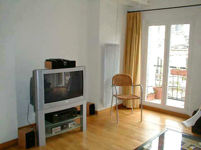 Paris apartment has a cable tv, and a pretty balcony